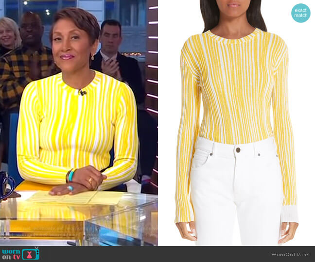 Stripe Rib Knit Sweater by Calvin Klein 205W39NYC worn by Robin Roberts  on Good Morning America