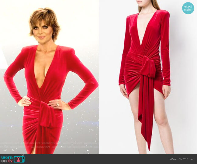 Plunging V-Neck Dress by Alexandre Vauthier worn by Lisa Rinna  on The Real Housewives of Beverly Hills