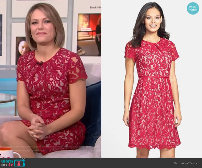 Scalloped Lace Dress by Adrianna Papell worn by Dylan Dreyer  on Today