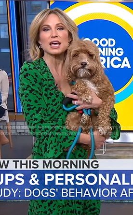 Amy's green printed wrap dress on Good Morning America