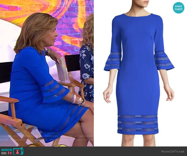 Bell-Sleeve Striped Mesh Dress by Calvin Klein worn by Hoda Kotb (Hoda Kotb) on Today