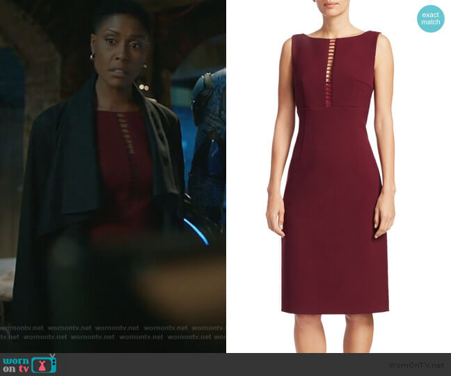 Doreen Ladder Front Sheath Dress by Elie Tahari worn by Lynn Stewart (Christine Adams) on Black Lightning