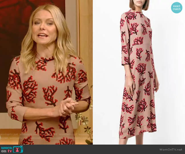 Branch Print Dress by Marni worn by Kelly Ripa  on Live with Kelly & Ryan