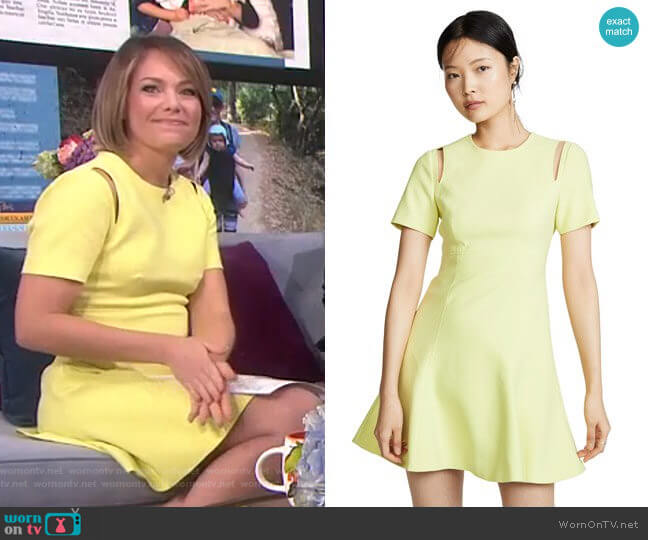 Alyssa Dress by Cinq a Sept worn by Dylan Dreyer  on Today