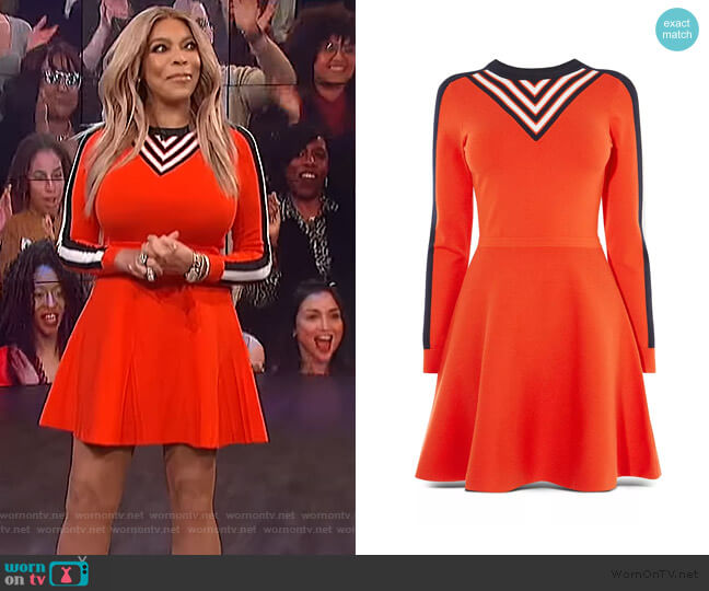 Stripe Detail Fit-and-Flare Dress by Karen Millen worn by Wendy Williams (Wendy Williams) on The Wendy Williams Show