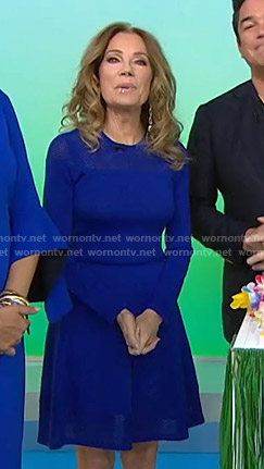 Kathie's blue mesh panel dress on Today