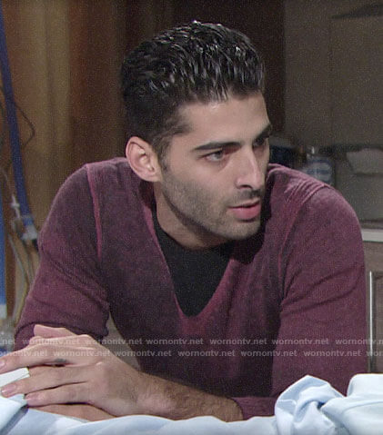 Arturo's purple v-neck sweater on The Young and the Restless