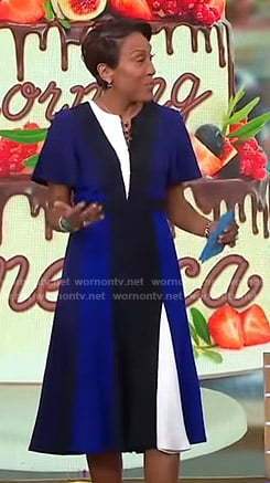 Robin's blue striped short sleeve dress on Good Morning America