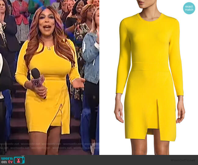 Hadley Long-Sleeve Dress by A.L.C. worn by Wendy Williams  on The Wendy Williams Show