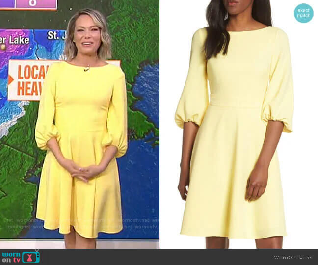 Balloon Sleeve Fit & Flare Dress by Eliza J worn by Dylan Dreyer  on Today