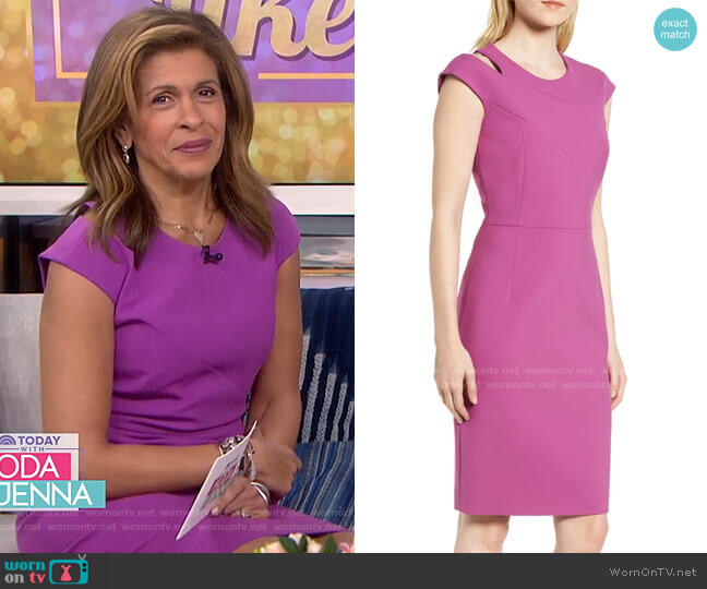 Danouk Sheath Dress by Boss worn by Hoda Kotb  on Today