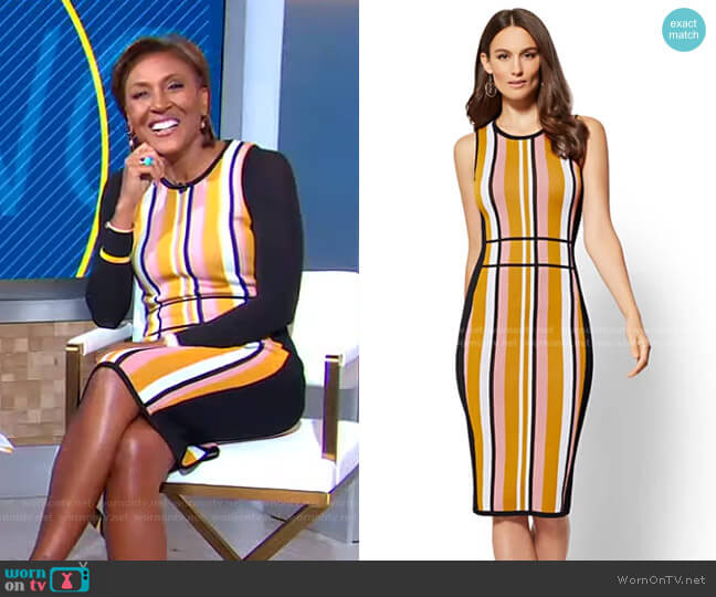Stripe Sweater Sheath Dress - 7th Avenue by New York & Company worn by Robin Roberts  on Good Morning America