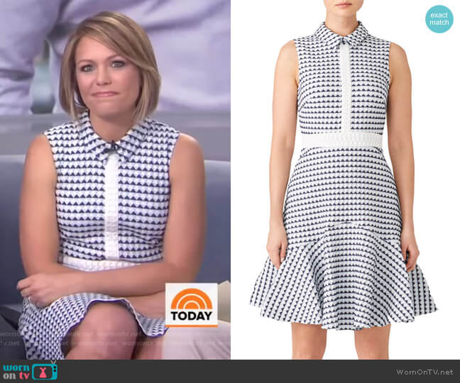 Salome Shirtdress by Shoshanna worn by Dylan Dreyer  on Today