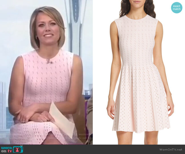 Vellia Dress by Ted Baker worn by Dylan Dreyer  on Today