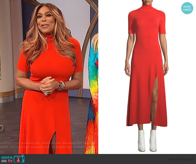 Caplan Dress by A.L.C. worn by Wendy Williams  on The Wendy Williams Show