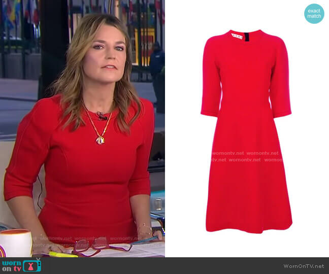 Flared Shift Dress by Marni worn by Savannah Guthrie  on Today