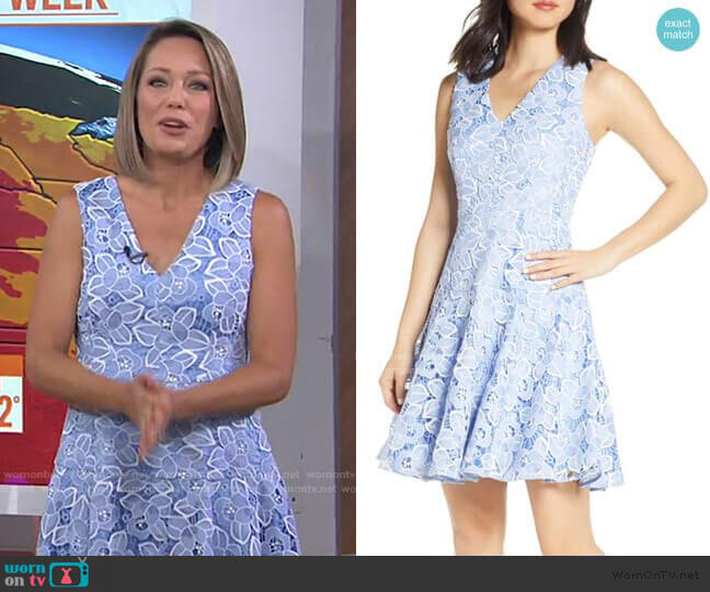 Sleeveless Lace Fit & Flare Dress by Eliza J worn by Dylan Dreyer  on Today