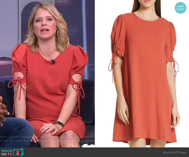 Cinch Sleeve Shift Dress by See by Chloe worn by Sara Haines  on Good Morning America