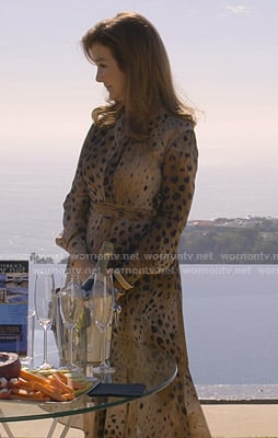 Lorna's beige leopard print dress on Dead to Me