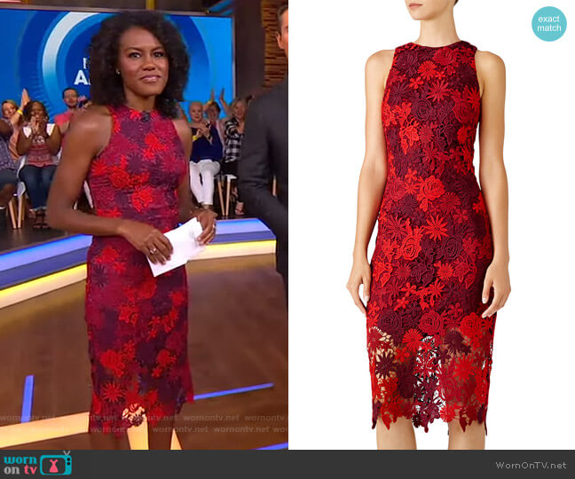 Floral Lace Sheath Dress by Alexia Admor worn by Janai Norman  on Good Morning America