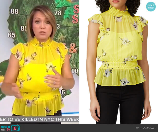 Smocked Waist Top by Great Jones worn by Dylan Dreyer  on Today