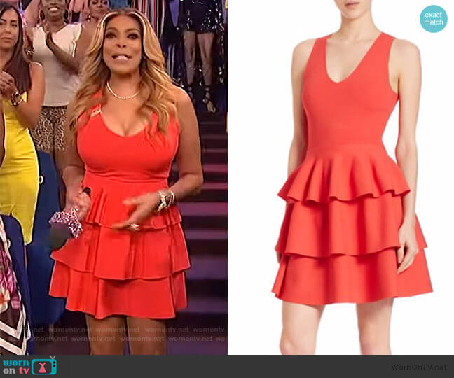 Tiered Dress by Parker worn by Wendy Williams  on The Wendy Williams Show