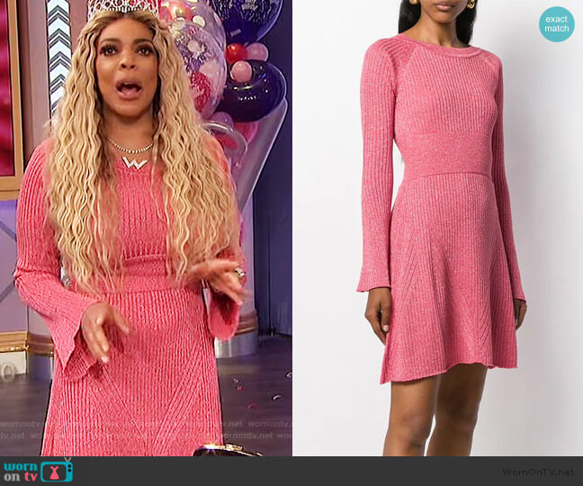 Ribbed Knit Dress by Pinko worn by Wendy Williams  on The Wendy Williams Show