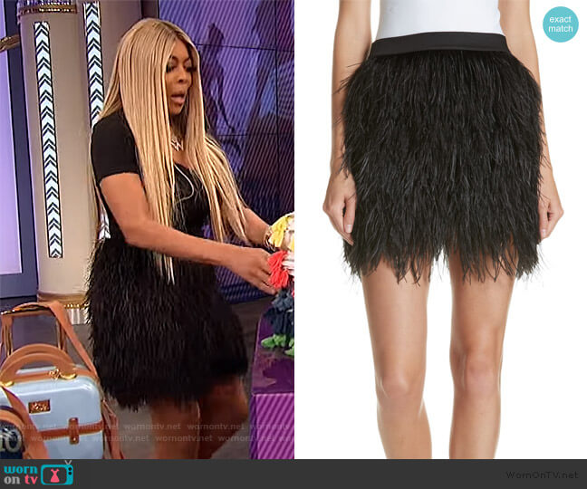 Ostrich Feather Miniskirt by Robert Rodriguez worn by Wendy Williams  on The Wendy Williams Show