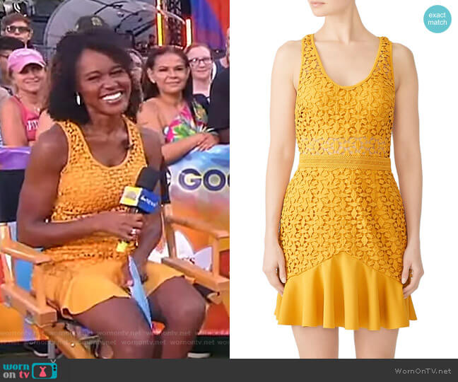 Solana Dress by Style Stalker worn by Janai Norman  on Good Morning America