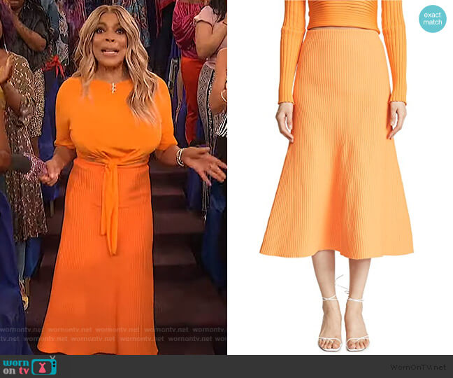 Ribbed Skirt by Tibi worn by Wendy Williams  on The Wendy Williams Show