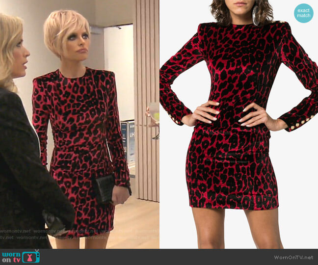 Leopard Print Silk Mini Dress by Balmain worn by Lisa Rinna  on The Real Housewives of Beverly Hills
