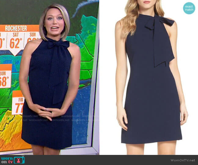 Halter Tie Neck A-Line Dress by Vince Camuto worn by Dylan Dreyer  on Today