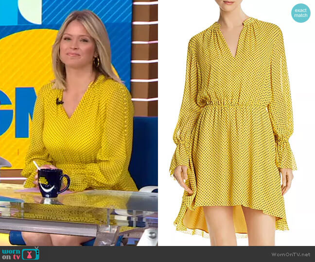 Daevon Dress by Joie worn by Sara Haines  on Good Morning America