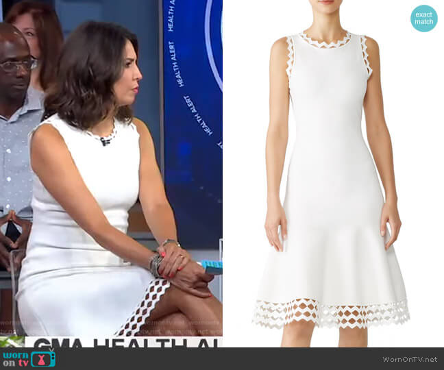Diamond Cut Dress by Milly worn by Cecilia Vega  on Good Morning America