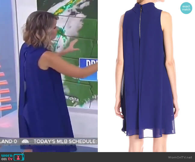 Mock Neck Chiffon Trapeze Dress by Vince Camuto worn by Dylan Dreyer  on Today