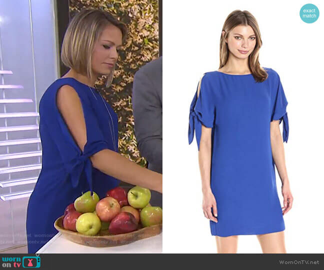 Solid Crepe Shift Dress by Vince Camuto worn by Dylan Dreyer  on Today
