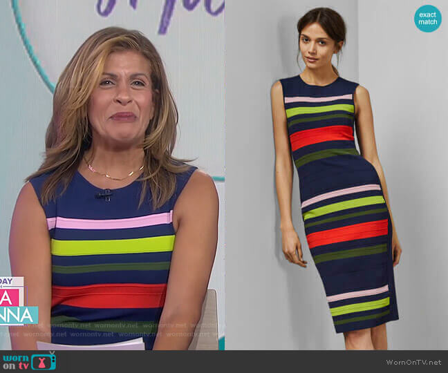 Ysina Striped Dress by Ted Baker worn by Hoda Kotb  on Today
