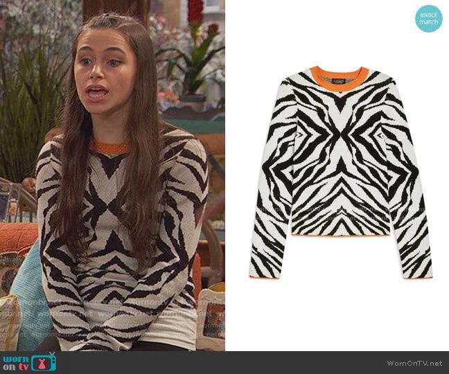 Zebra Skinny Sweater by Topshop worn by Tess O'Malley (Sky Katz) on Ravens Home