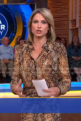 Amy's animal print dress on Good Morning America