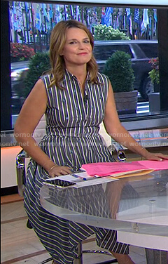 Savannah's grey striped sleeveless shirtdress on Today