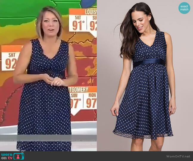 Polka Dot Silk Maternity Dress by Seraphine worn by Dylan Dreyer  on Today