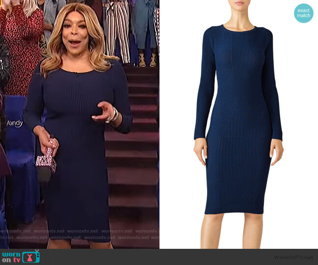 January Knit Dress by Nicole Miller worn by Wendy Williams  on The Wendy Williams Show