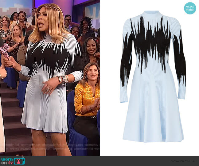 Blue Intarsia Knit Dress by Opening Ceremony worn by Wendy Williams  on The Wendy Williams Show