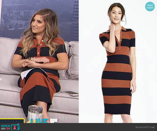 Ribbed Polo Sweater Dress by Banana Republic worn by Tierney Bricker on Live from E!