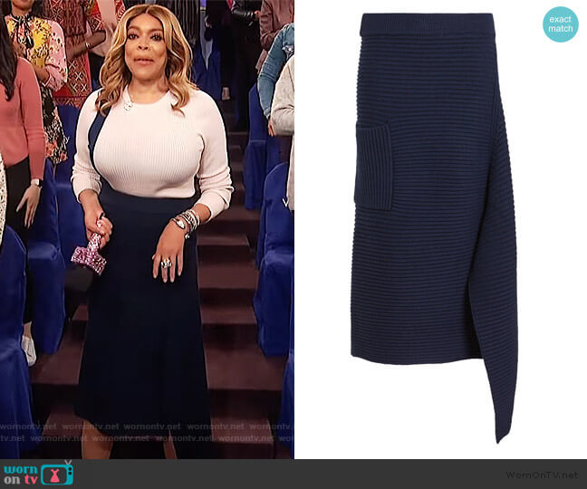 Asymmetric Origami Skirt by Tibi worn by Wendy Williams  on The Wendy Williams Show