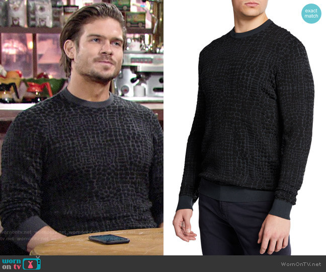 Emporio Armani Animal-Pattern Crewneck Sweater worn by Theo on The Young and the Restless