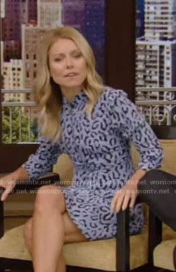 Kelly's blue leopard print dress on Live with Kelly and Ryan