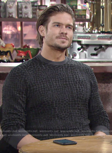 Theo's animal textured sweater on The Young and the Restless