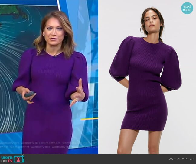 Puffy Sleeved Dress by Zara worn by Ginger Zee  on Good Morning America