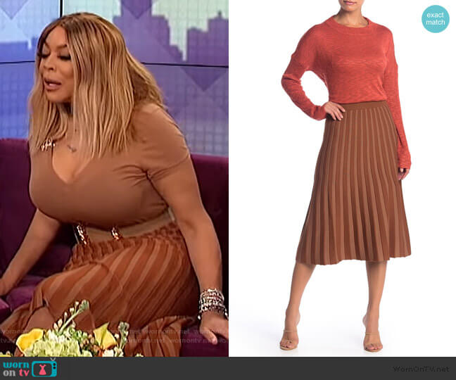 Pleated Midi Skirt by Lush worn by Wendy Williams  on The Wendy Williams Show